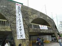 名護球場.jpg